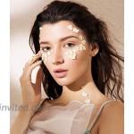 LOYALLOOK 12Pcs Fake Nose Rings Clip on Nose Ring Hoop Septum Faux Nose Rings for Women Men