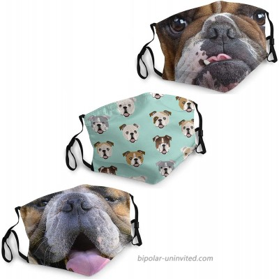 Bulldog Face mask Breathable Protection Contour fit Lightweight Design for Travel or Everyday Use at  Men's Clothing store