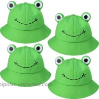 4 Pieces Frog Bucket Hat Cute Adult Fisherman Hat Animal Sun Frog Hat Wide Brim Beach Summer Hat for Women Teens Girls Outdoor Sports at  Women's Clothing store